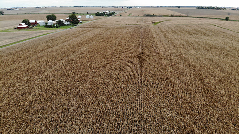 Drone Footage from Bureau County